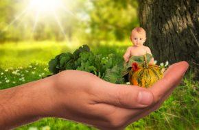 child 2002083 640 290x190 - Notizie dal blog