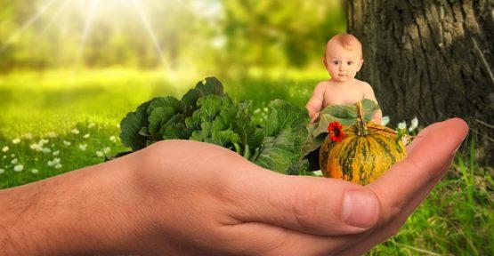 child 2002083 640 555x288 - Notizie dal blog