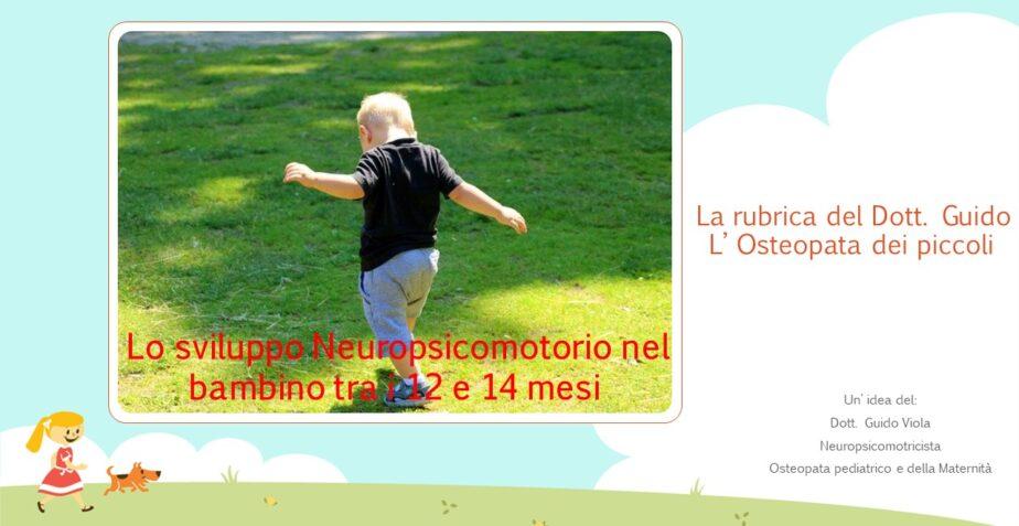 Sviluppo Neuropsicomotorio nel bambino di 12/14 mesi